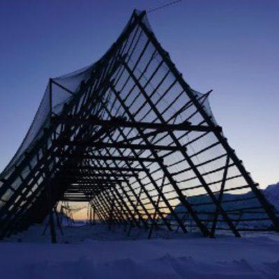 En god grunn til å booke vår aktivitet Barentshavets produkter